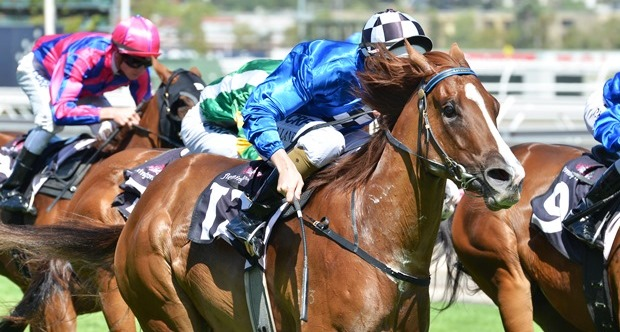 Wild Rain magic in McEwen Stakes